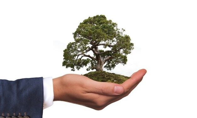 Sotubema allie éco-responsabilité et Travaux publics
