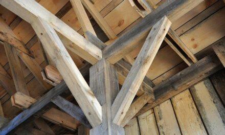 Une solution innovante dans la construction : du bois lamellé-collé en hêtre